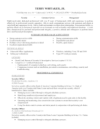 Resume Templates Entry Level Information Technology Sample