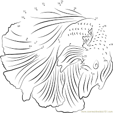 Betta Fish Coloring Page And Pages