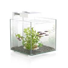 aquariums et meubles achat aquarium de qualité animalerie truffaut