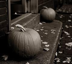 Free Pumpkin Patch In Fredericksburg Va by 116 Best Pumpkins Images On Pinterest Pumpkins Phone Cases And