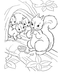Squirrel Coloring Pages For Kids