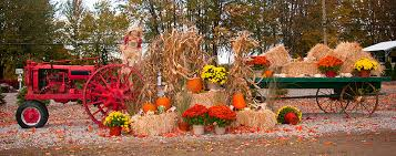 Pumpkin Patch Hayrides Lancaster Pa by Hitting The Hay Top 8 Hayrides Across The Country