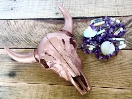 Decorated Cow Skulls Australia by Rose Gold Cow Skull Faux Skull Faux Taxidermy Skull Home