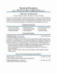 What Is A Functional Resume Quizlet Elegant Profile Example Examples For College Students Professional