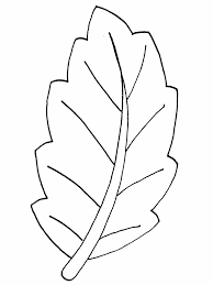 Coloring Page Of Leaves Fall Free