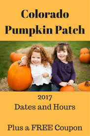 Pumpkin Patch In Colorado Springs Co 2013 by 9 Best Project Hard Rock Images On Pinterest Hard Rock Hawaii