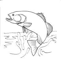 Spectacular Printable Fish Coloring Pages For Kids With Rainbow