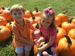 Pumpkin Patch Stamford Ct by Glenwick U0027s View All Because Two People Fell In Love