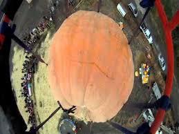 Fleitz Pumpkin Farm Groupon by Pumpkin Definition Crossword Dictionary