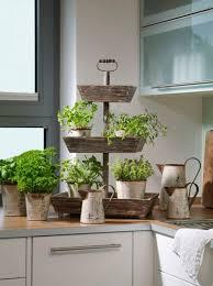 arndt grün erleben frische für die küche