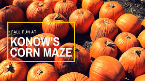 Pumpkin Patch In Homer Glen Illinois by Fall Fun At Konow U0027s Corn Maze O The Places We Go