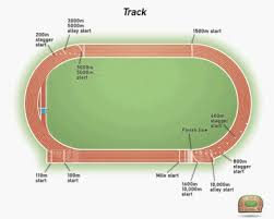 Track & Field Dimensions
