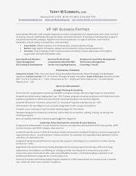 Hr Business Partner Resume Luxury Sample Financial Resumes ...