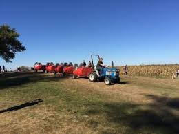 Corn Maze Pumpkin Patch Winston Salem Nc by The Best Pumpkin Patches For Picking Your Own Jack O U0027 Lantern