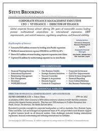 CFO Resume Sample Vice President Of Finance Director Cv Template