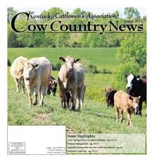 Pulaski Mcguire Bar Cabinet by Cow Country News August 2015 By The Kentucky Cattlemen U0027s