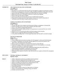 Download Selling Supervisor Resume Sample As Image File