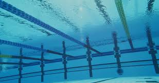 Olympic Swimming Pool Underwater Merveilleux 4k Shaky Slow Mo Of Professional Swimmer
