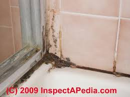Serratia Marcescens Bathroom Treatment by Fascinating 40 Is Mold In Bathroom Bad Design Decoration Of