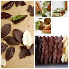 decoration patisserie en chocolat décoration au chocolat