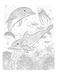 Oceana Coloring Pages For AdultsOcean PagesPrintable