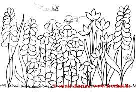 Gorgeous Design Ideas Flower Garden Coloring Pages 2 Exquisite