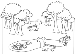 Forest Animals Free Coloring Book From Microsoft