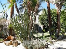 Moorten Botanical Garden Moorten Botanical Garden Palm Springs Ca
