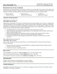 Save Best Ideas Rhcrossfitrespectcom Information Resume Summary Examples Auditor Technology Specialist Sample