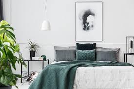 pflanzen im schlafzimmer schlaf gut in deinem grünen