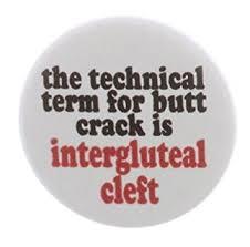 terme technique de cuisine le terme technique pour fût est sillon interfessier 2 25