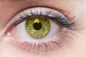 Prescription Halloween Contacts Astigmatism by Are Color Contacts More Expensive Allaboutvision Com