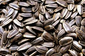 Roasted Pumpkin Seeds Glycemic Index by What Are The Health Benefits Of Sunflower Seeds