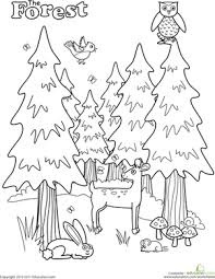 Christmas Tree Books For Kindergarten by Forest Coloring Page Worksheets Kindergarten And Animal
