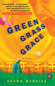 Water Beds And Stuff by Green Grass Grace Book By Shawn Mcbride Official Publisher