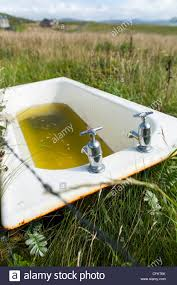 Horse Trough Bathtub Diy by An Old Bath Tub Is Recycled To Be Used As A Water Trough For Farm