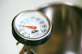 grillthermometer test empfehlungen 04 21 grilltiger