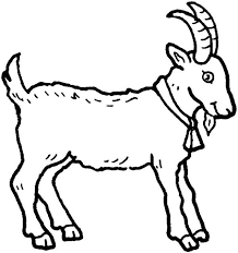 Picture Of A Goat In Farm Animal Coloring Page