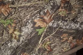 Mossy Oak Mossy Oak Break Up Camo 3 Piece Crib Bedding Set
