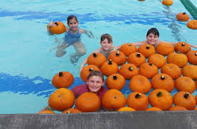 Irvine Ranch Railroad Pumpkin Patch by Best 2017 Halloween Events For Kids In Orange County Cbs Los Angeles