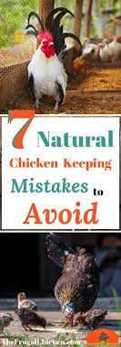 7 Natural Chicken Keeping Mistakes New Owners Make | Backyard ... Why Should You Compost Chicken Manure Is Naturally High In 1105 Best Backyard Project Images On Pinterest Raising Baby Chick Playground Coops Pet Chickens And Worming Backyard Controversial Here Are Tips How To Naturally Treat Coccidiosis Your Chickens Natural Treatment Of Vent Prolapse Ducks 61 To Me Raising Means Addressing Healthkeeping Deworming Homesteads