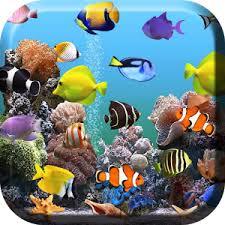 aquarium fond d écran animé apk télécharger apps gratuit