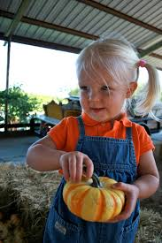 Rutledge Pumpkin Patch Springfield Mo by The Percival Family Mainstay Farms Pumpkin Patch Having Fun At