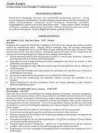 Sample Resume Summary Statements About Experience New Objective Examples Statement