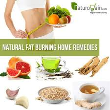 Top 10 Natural Fat Burning Home Reme s That Work Remarkably
