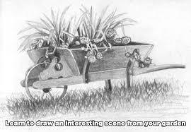 22 wheelbarrow drawing outdoors drawing
