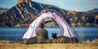 100 Ozark Trail Dome Truck Tent Best Tent For Camping With A Dog Tip