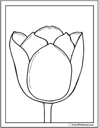 Tulip Coloring Pages Flower 14 Pdf Printables