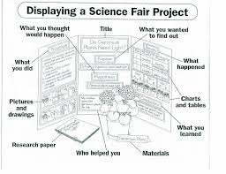 Take The Quiz On Step 7 And Science Fair Displays