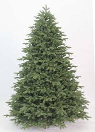 Ge Artificial Christmas Trees by Ge 7 5 Ft 2556 Count Pre Lit Alaskan Fir Flocked Artificial